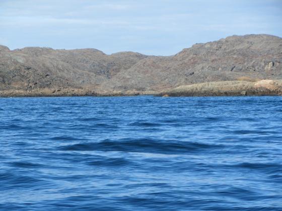 Qaummaarviit island
